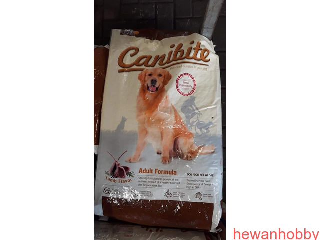Canibite,profesional formula,optima,Maxi dog,Bridge joy - 4