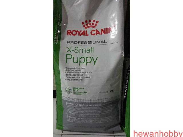 Starry dog,maxi cat,velcote,blower/pengering bulu,Royal canine X small 14kg - 5