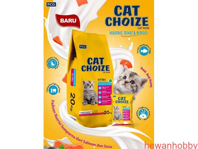 Cat food - 1