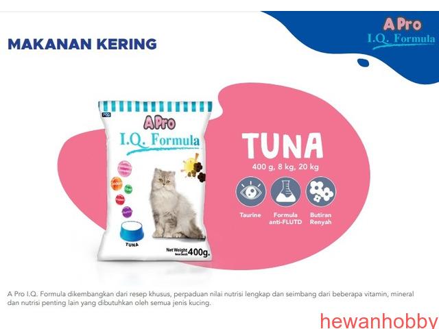 Cat food - 3